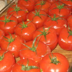 Summer Food: Stuffed Tomatoes